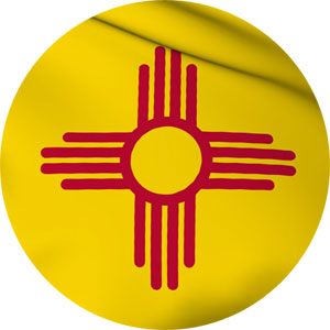 nm-stateflag-main