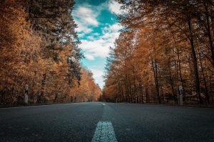 road-2925075_960_720223